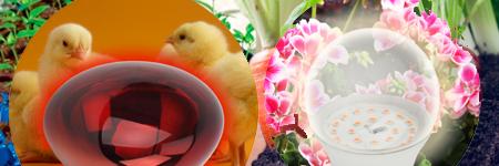Светодиодное освещение для растений и животных