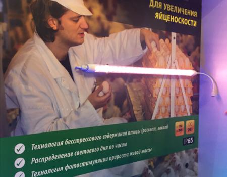 Итоги выставки interlight Moscow 2016